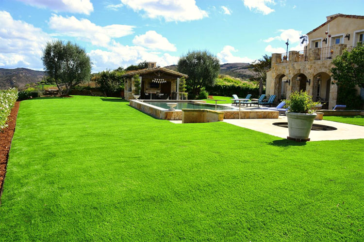 GET YOUR WATER-SAVING REBATES FOR INSTALLING TURF (IF YOU CAN)